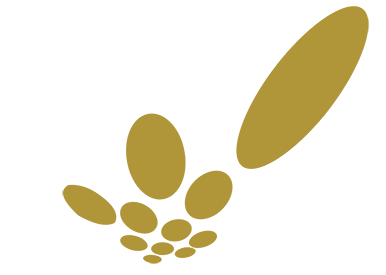 circles_gold